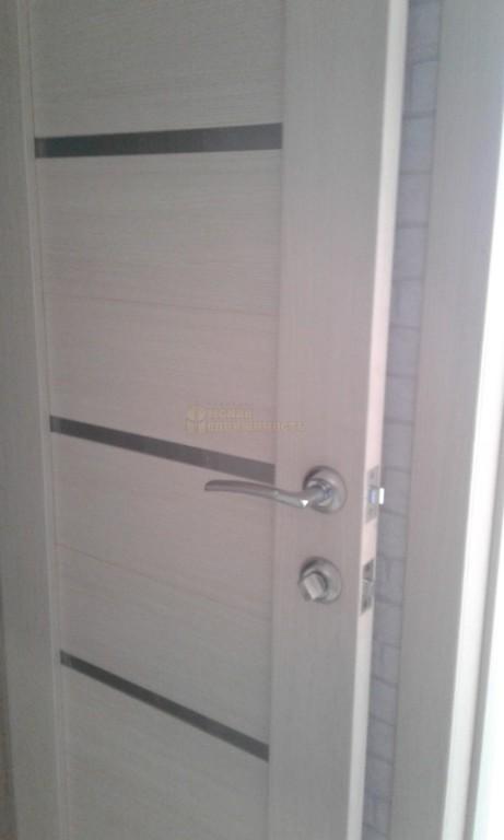 ЖК Мята_межкомнатная дверь
